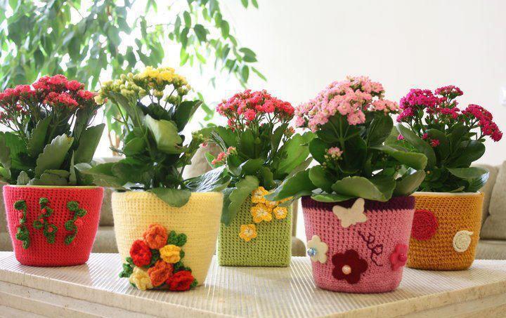 jardins-pequenos-bonitos