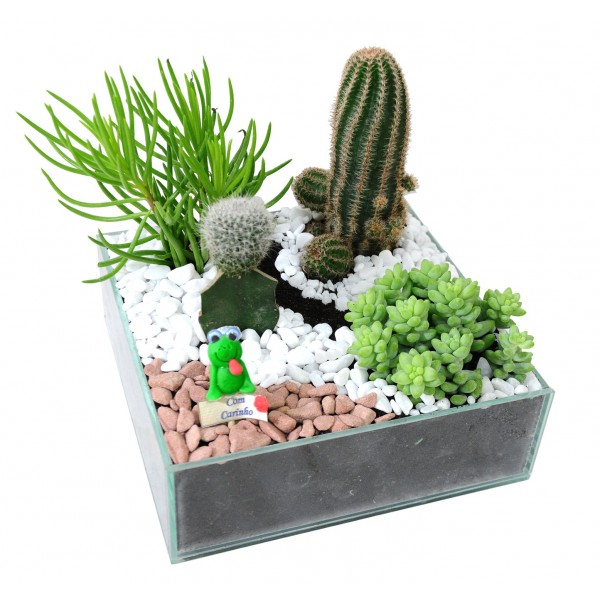 mini jardim residencial:Jardins Pequenos Lindos Em Pouco Espaço Picture Pictures to pin on