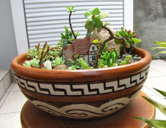 Suculentas na decora o blog mix lar for Como criar caracoles de jardin