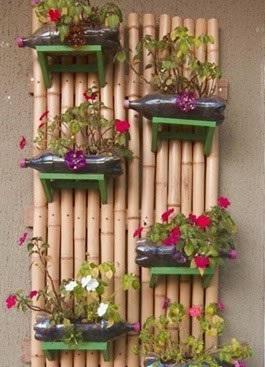 pet-bambu