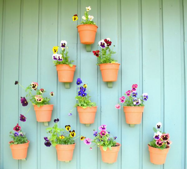 vasinhos-jardim-em-casa-1